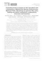 Cyanobacterial ecotypes in the microbial mat community of Mushroom Spring (Yellowstone National Park, Wyoming) as species-like units linking microbial community composition, structure and function