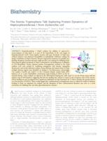 The Stories Tryptophans Tell: Exploring Protein Dynamics of Heptosyltransferase I from Escherichia coli