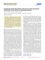 Lipopolysaccharide Biosynthesis without the Lipids: Recognition Promiscuity of Escherichia coli Heptosyltransferase I