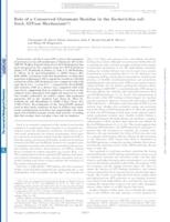 Role of a Conserved Glutamate Residue in the Escherichia coli SecA ATPase Mechanism
