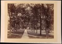 Campus II, 1879 - Photos